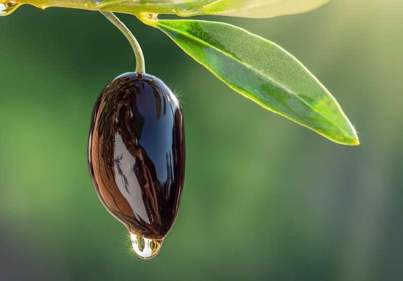 Mangonui Olive Oil