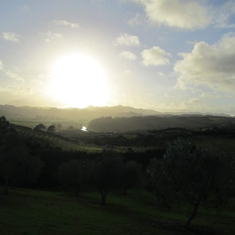 Sunrise over Mangonui