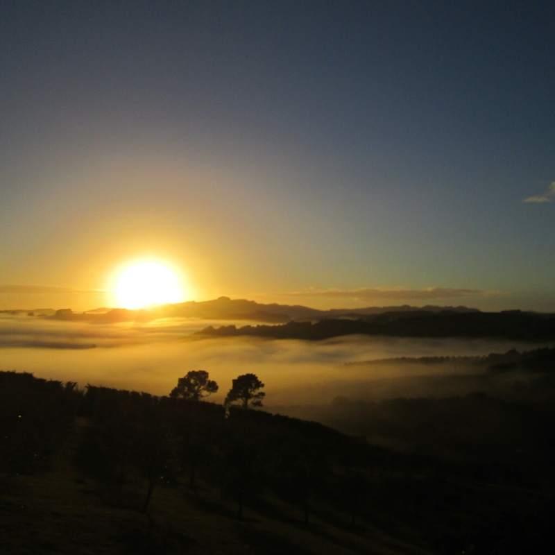 Mangonui sunrise